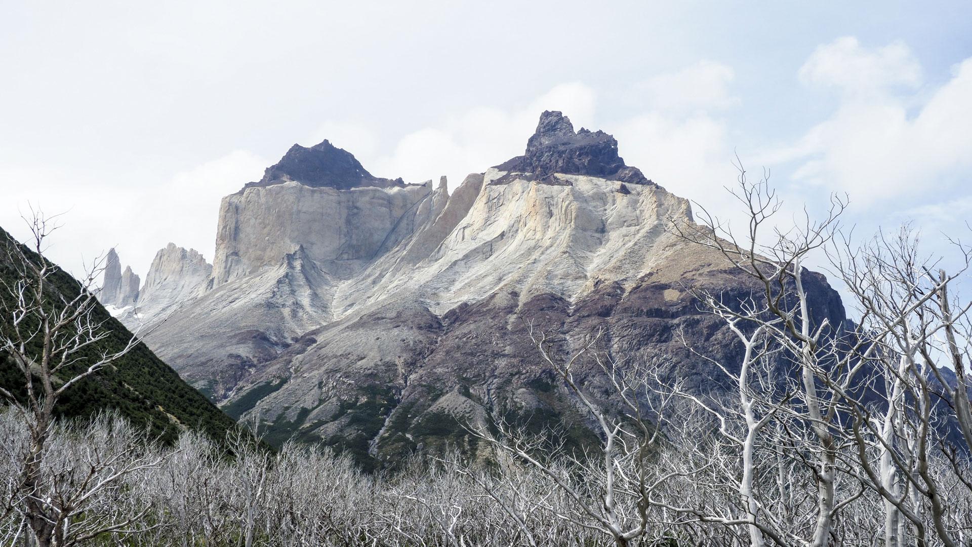 Patagonien-(24)