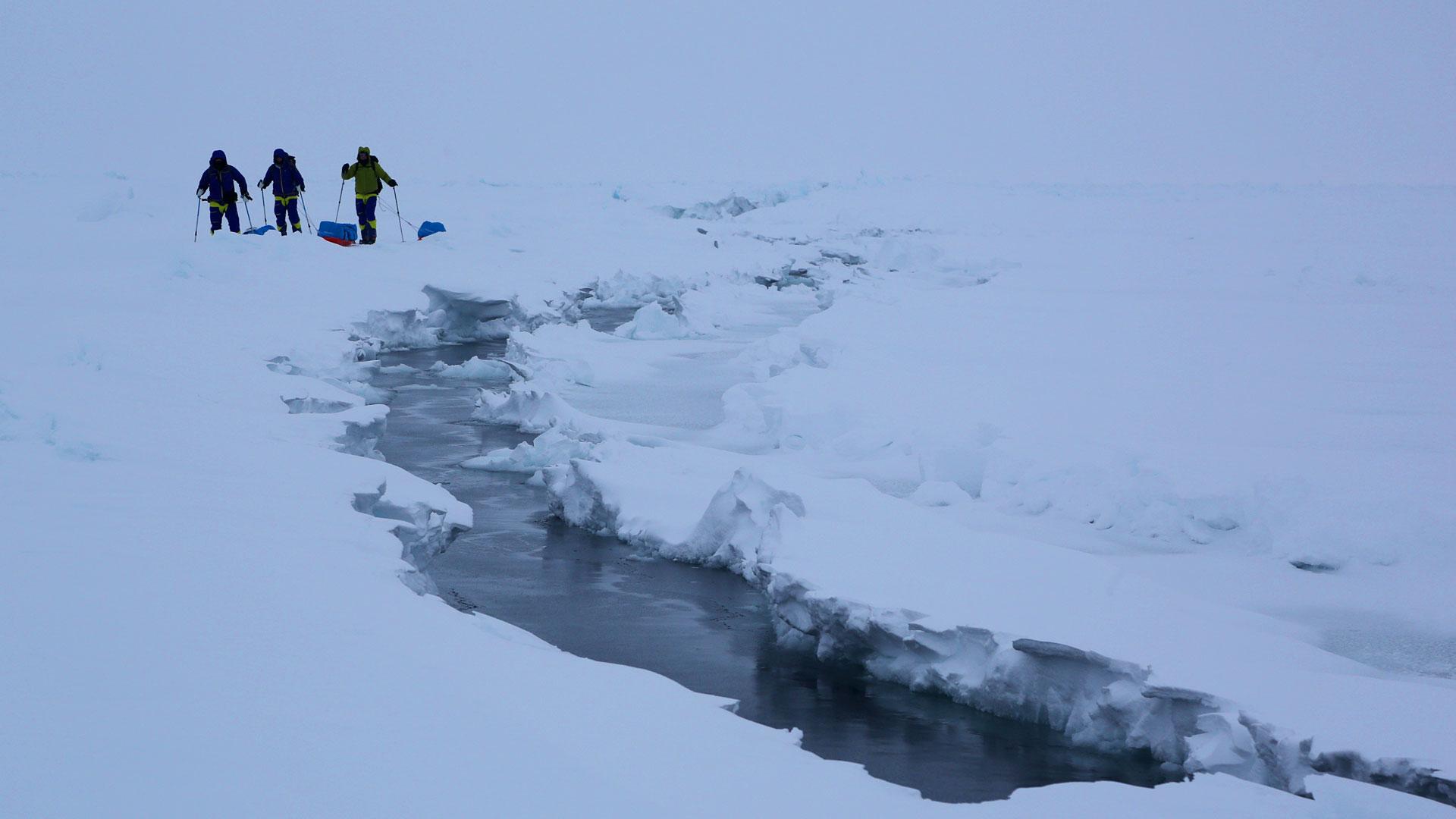 Expeditionsresor Nordpolen 2014 (14)