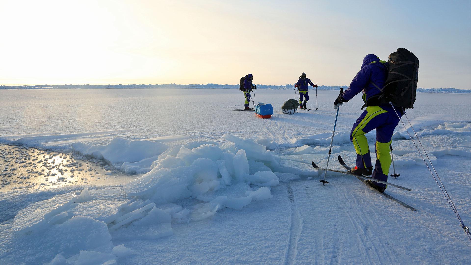 Expeditionsresor Nordpolen 2014 (19)